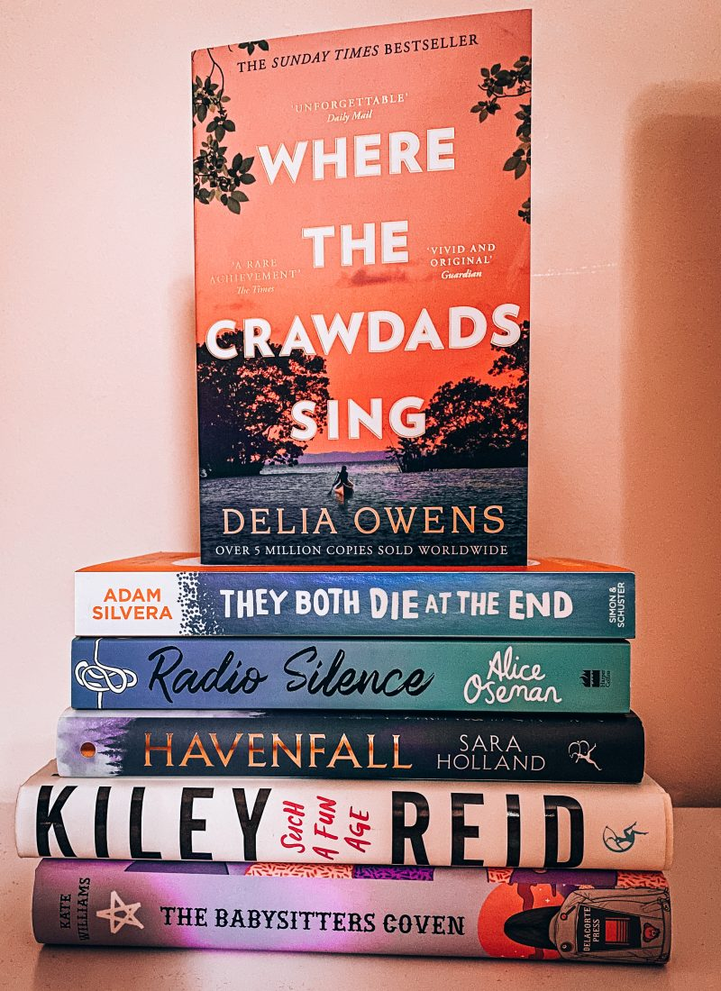 All Of The Books On My TBR Books