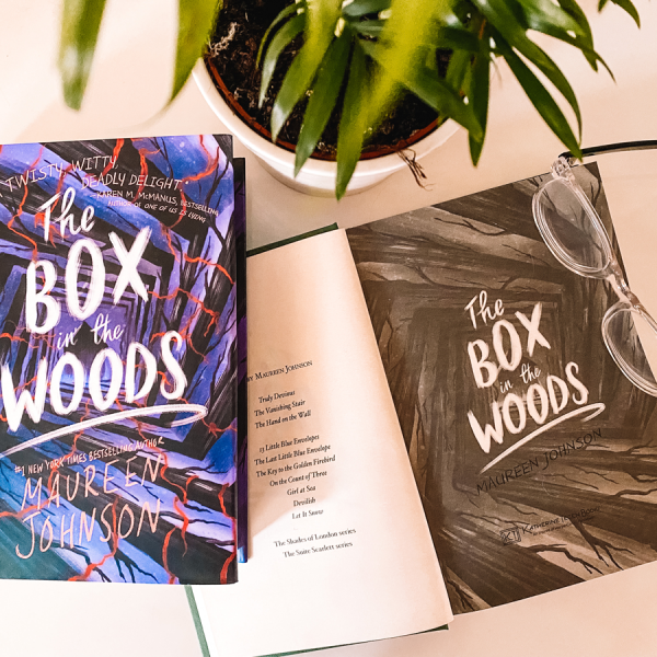 The Box In The Woods Book Review