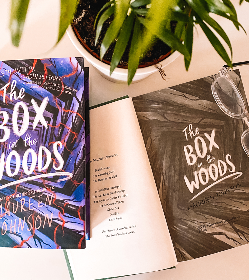 The Box In The Woods | Book Review